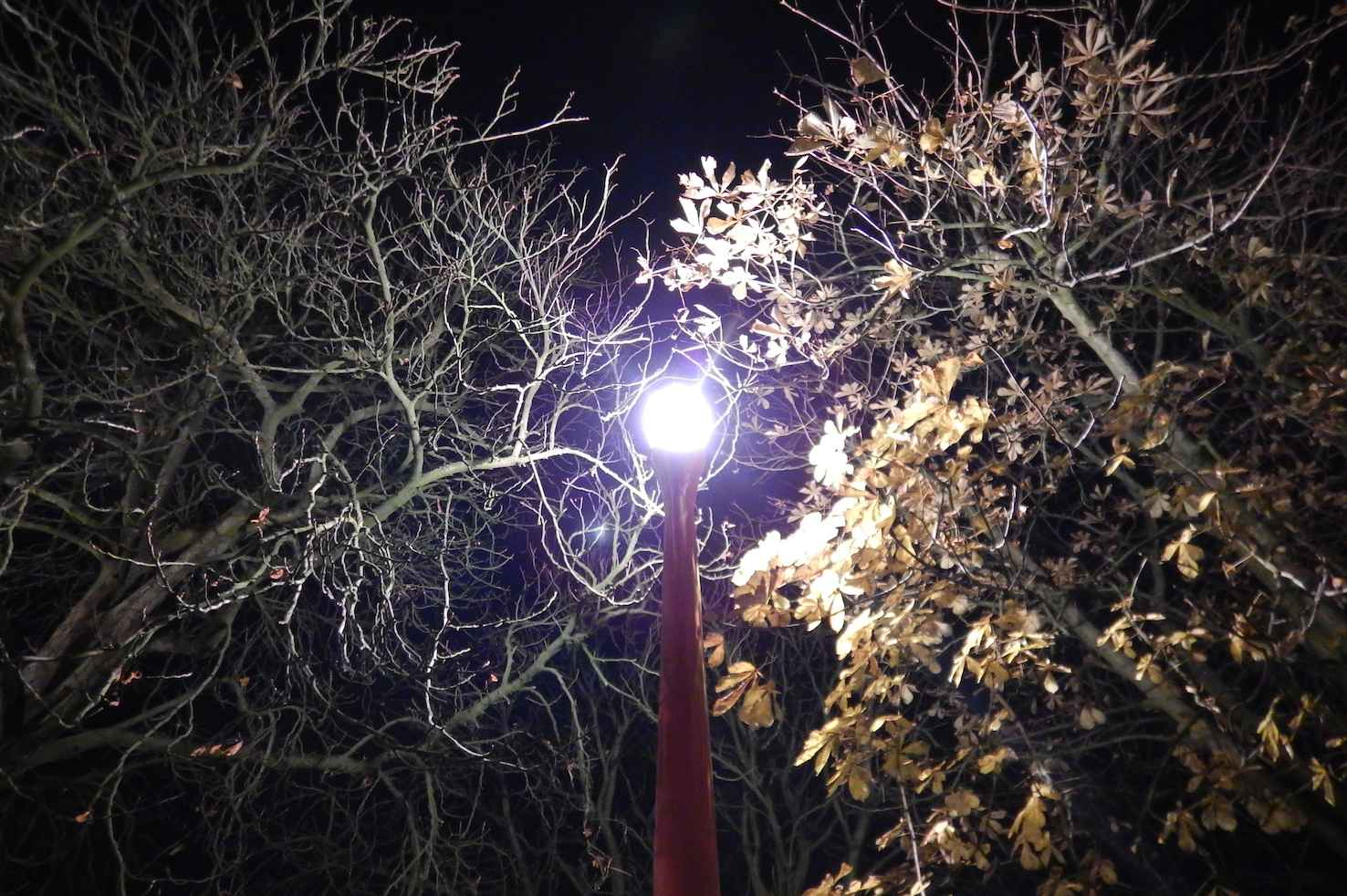 Vedo Le Luci Di Tutte Le Vetrine.Azione Settimanale Di Migros Ticino Tramontata E La Notte
